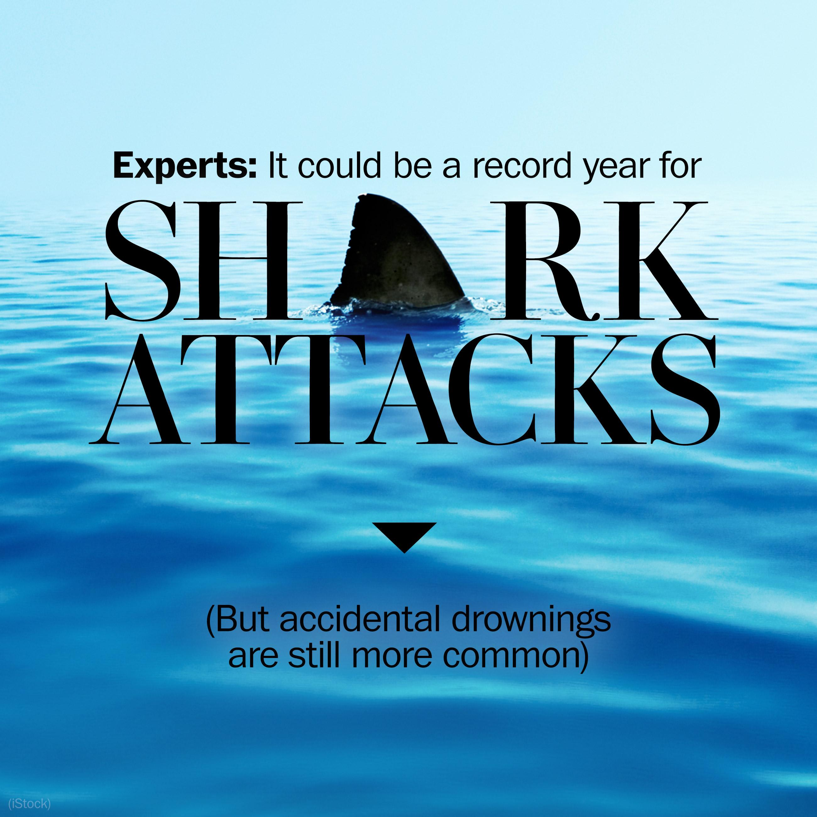 Experts warn 2016 could see a record number of shark attacks