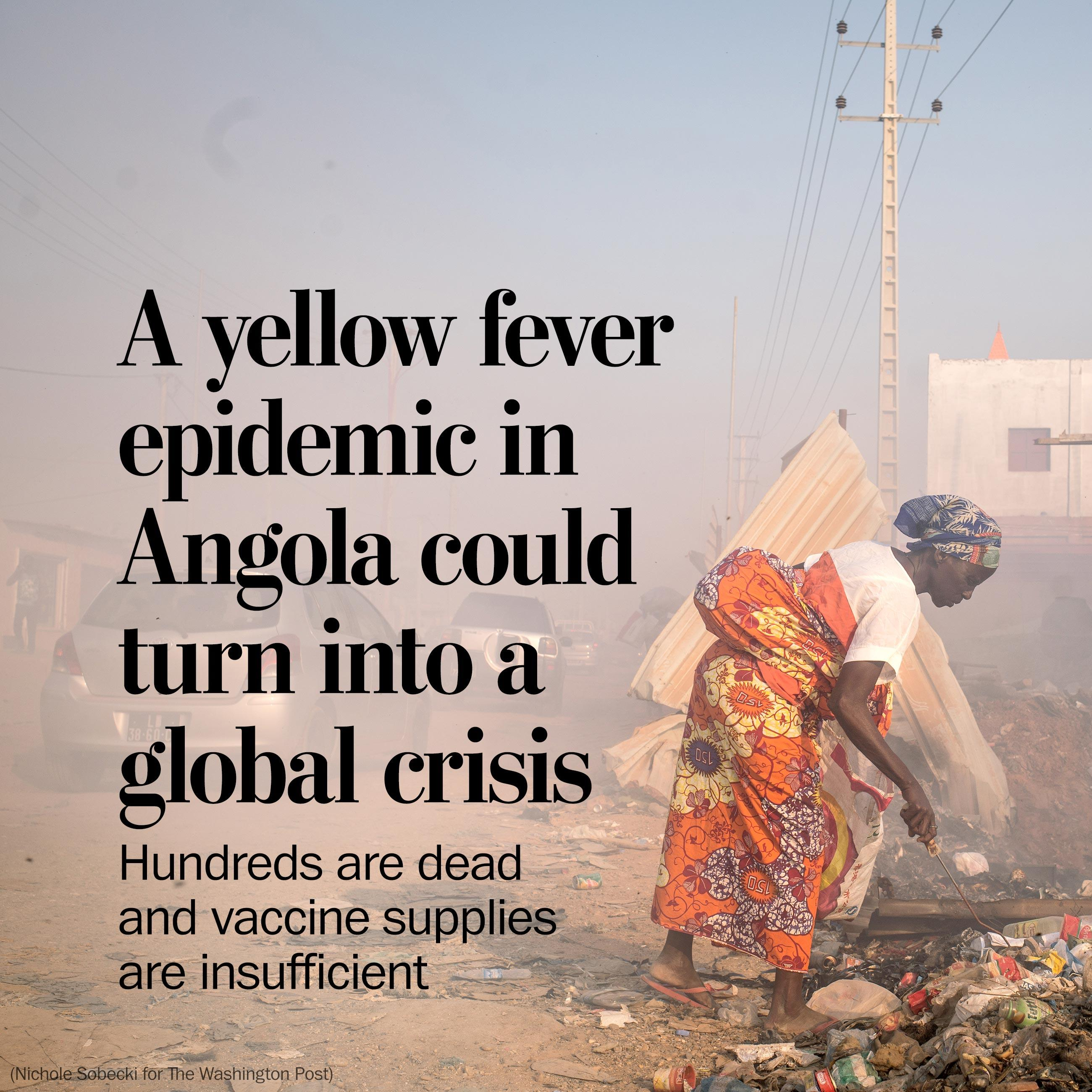A yellow fever epidemic in Angola could turn into a global crisis